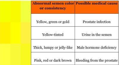 Duckling reccomend Male sperm colors
