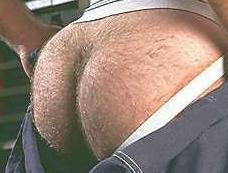 Gr8 B. recomended Hairy ass pic